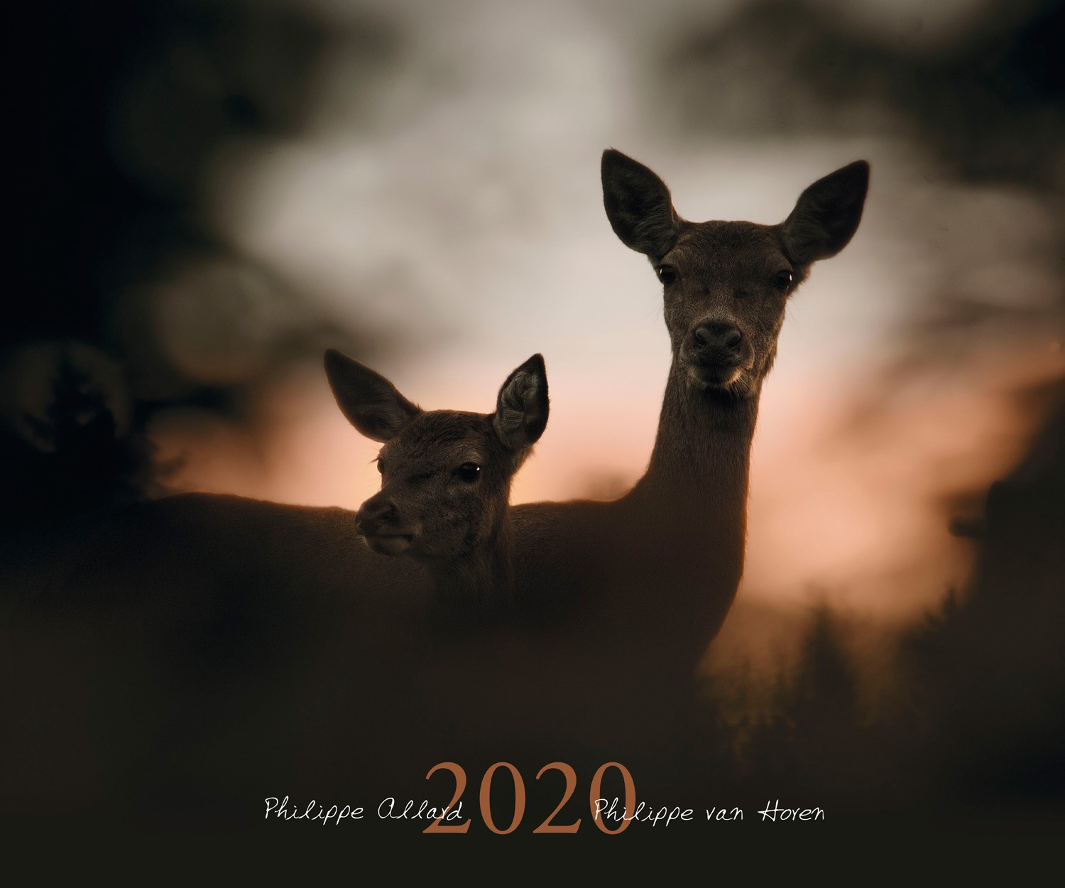 Calendrier animalier 2020, made in chasse - equipements d...