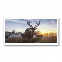 Plaque photo décorative PVC Cerfs en velours