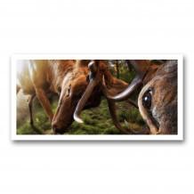 Plaque photo décorative PVC Combat de cerfs