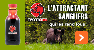 BLACK FIRE, l'attractant qui les rend fous !